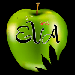 EVA Seeds Seedsman Promo