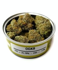ogkb, ogkb for sale, ogkb space monkey meds, ogkb space monkey strain, ogkb strain, ogkb strain for sale, ogkb strain for sale France, ogkb strain for sale Germany, ogkb strain for sale UK, ogkb weed, Buy ogkb marijuana strain, Buy ogkb online, Buy ogkb Space Monkey Meds Online, Buy ogkb strain Australia, buy ogkb strain online, Buy ogkb strain UK, Get you best ogkb strain online, order ogkb strain Australia, Order ogkb strain online, order ogkb strain UK, Purchase original ogkb online, space monkey, space monkey ogkb strain, space monkey meds, space monkey strain, the ogkb strain, Where to Buy ogkb Space Monkey Meds, where to buy ogkb strain