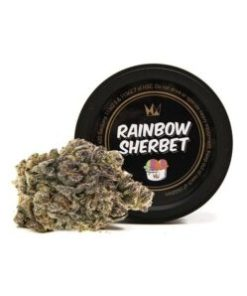 rainbow sherbet for Sale, rainbow sherbet Strain for Sale, rainbow sherbet West Coast Cure for Sale, Buy rainbow sherbet, buy rainbow sherbet Strain, Buy rainbow sherbet Strain by West Coast Cure, Buy rainbow sherbet Strain West Coast Cure, Buy rainbow sherbet West Coast Cure, buy West Coast Cure rainbow sherbet, buy west coast cure rainbow sherbet online, buy west coast cure online, Order rainbow sherbet Strain, Order rainbow sherbet West Coast Cure, order west coast cure rainbow sherbet, PURCHASE rainbow sherbet WEST COAST CURE, Shop rainbow sherbet West Coast Cure, west coast cure, west coast cure rainbow sherbet, west coast cure rainbow sherbet for sale, west coast cure for sale, Where to Buy rainbow sherbet Strain, Where to Buy rainbow sherbet West Coast Cure