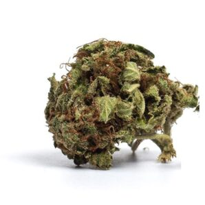 buy brain freeze strain online