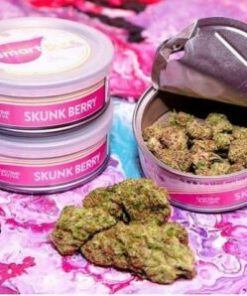 buy skunk berry smart bud online, Buy skunk berry Smart Buds Online, buy skunk berry smartbud online, buy skunk berry strain online, Buy Smart Bud Tins, Buy smart bud tins online, buy smartbud online, Buy your smart bud tins online, skunk berry, skunk berry smart bud, skunk berry Smart Buds for Sale, skunk berry smartbud, skunk berry SmartBud for Sale, skunk berry strain for sale, How to Buy skunk berry Smart Buds, Order skunk berry, Order skunk berry Smart Buds, Shop Smart buds, smart bud, smartbud, smartbud cans, Where to Buy skunk berry Smart Buds, Where to Buy skunk berry SmartBud