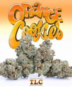 buy jungle boys orange cookies, buy jungle boys orange cookies hybrid, buy Jungle Boys Orange Cookies online, Buy Jungleboys Online, Buy Orange Cookies Jungleboys, buy orange cookies strain, Buy Orange Cookies USA, jungle boys, jungle boys bags, jungle boys carts, jungle boys dispensary, Jungle Boys Orange Cookies for sale, jungle boys orange cookies from cake, jungle boys orange cookies leafly, jungle boys orange cookies made, Jungle Boys Orange Cookies online, jungle boys orange cookies recipe, jungle boys orange cookies seeds, jungle boys orange cookies strain, jungle boys orange cookies strain effects, jungle boys orange cookies weed, Jungle Boys Orange Cookies weed packs, jungle boys orange cookies with icing, jungle boys orange cookies with orange, jungle boys packaging, jungle boys seeds for sale, jungle boys strain, jungle boys strains, jungle boys weed, jungleboys for sale, Orange Cookies Jungleboys delivery, Orange Cookies Jungleboys wholesale, orange cookies strain allbud, orange cookies strain cannabis, orange cookies strain cbd, orange cookies strain genetics, orange cookies strain info, orange cookies strain price, orange cookies strain review, orange cookies strain sativa or indica, orange cookies strain seeds, orange cookies strain seeds for sale, orange cookies strain thc, orange cookies strain yield, order Jungle Boys Orange Cookies online, Order Orange Cookies Jungleboys
