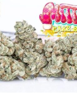 buy Jungle Boys Mitten Cake Batter online, buy weed packs online, jungle boys, jungle boys carts, Jungle Boys Mitten Cake Batter, Jungle Boys Mitten Cake Batter for sale, Jungle Boys Mitten Cake Batter online, Jungle Boys Mitten Cake Batter strain, jungle boys seeds, jungle boys strain, jungle boys weed, mitten cake batter, mitten cake batter strain, mitten cake batter strain jungleboys, mitten cake batter strain leafly, mitten cake batter strain on instagram, online marketplace for mitten cake batter strain