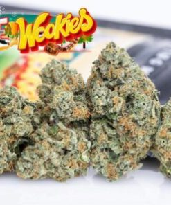 buy jungle boys weed packs online, buy Jungle Boys White wookies online, buy Jungle Boys White wookies weed packs online, Buy Jungleboys Online, buy jungles boys online, Buy white wookies Jungleboys, buy white wookies strain jungleboys, jungle boys for sales, jungle boys white wookies for sale, Jungle Boys White wookies for sales, Jungle Boys White wookies online, order jungle boys white wookies, order Jungle Boys White wookies online, Order White Wookies Jungleboys, White Wookies Jungleboys, White Wookies Jungleboys USA, White Wookies Jungleboys wholesale, white wookies online, white wookies strain