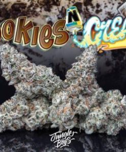 buy Jungle Boys Cookies And Cream online, buy Jungle Boys Cookies And Cream weed pack online, buy jungle boys cookies n cream online, buy weed pack online, jungle boys, jungle boys bags, jungle boys carts, Jungle Boys Cookies And Cream for sale, jungle boys cookies n cream, jungle boys cookies n cream for sale, jungle boys dispensary, jungle boys extracts, jungle boys instagram, jungle boys packaging, jungle boys seeds, jungle boys seeds for sale, jungle boys strain, jungle boys strains, jungle boys weed, order Jungle Boys Cookies And Cream online, order weed packs online, weed packs for sale