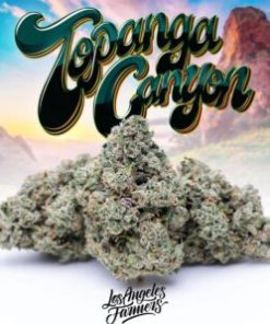 buy jungle boys grape topanga online, canyon cannabis, jungle boy carts, jungle boy strain, jungle boy weed, jungle boys, jungle boys cannabis, jungle boys carts, jungle boys grape topanga, jungle boys la, jungle boys prices, jungle boys strain, jungle boys strains, jungle boys topanga canyon, jungle boys topanga canyon og, jungle boys topanga canyon strain, jungle boys topanga for sale, jungle boys weed strain, jungle boyz, jungle breath strain, jungle cake strain leafly, jungle canyon, jungle cheese strain, jungle diamond strain, jungle jane strain, jungle refinery strain, jungleboys, jungleboys strains, the jungle boys, topanga canyon cannabis strain, topanga canyon og, topanga canyon og strain, topanga canyon og strain allbud, topanga canyon og strain info, topanga canyon og strain leafly, topanga canyon strain, topanga canyon strain allbud, topanga canyon strain info, topanga canyon strain leafly, topanga canyon strain pictures, topanga canyon strain review, topanga canyon strain thc level, topanga canyon weed strain, topanga og, topanga og strain, topanga strain, topanga valley