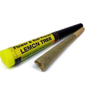 buy lemon tree space monkey meds online