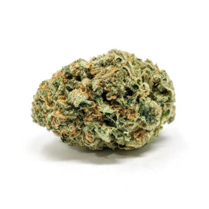 100% money back guarantee or reship, 24/7 Bubba Kush Delivery, Best Online Dispensary, bubba kush, Bubba Kush for sale in Canada without Script, Bubba Kush for sale in USA, Bubba Kush for sale without Script, Bubba Kush Mail order, Bubba Kush overnight Shipping, bubba kush strain, bubba kush weed, Bubba Kush Worldwide Delivery, Buy Bubba Kush in USA, Buy Bubba Kush online, Buy Cheap Bubba Kush, buy marijuana online, buy Pre-98 Bubba Kush, Legit Bubba Kush Online, Order Bubba Kush, Pre 98 Bubba Kush, pre 98 bubba kush strain