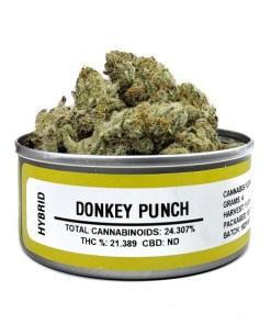 donkey punch, donkey punch for sale, donkey punch space monkey meds, donkey punch space monkey strain, donkey punch strain, donkey punch strain for sale, donkey punch strain for sale France, donkey punch strain for sale Germany, donkey punch strain for sale UK, donkey punch weed, Buy donkey punch marijuana strain, Buy donkey punch online, Buy donkey punch Space Monkey Meds Online, Buy donkey punch strain Australia, buy donkey punch strain online, Buy donkey punch strain UK, Get you best donkey punch strain online, order donkey punch strain Australia, Order donkey punch strain online, order donkey punch strain UK, Purchase original donkey punch online, space monkey, space monkey donkey punch strain, space monkey meds, space monkey strain, the donkey punch strain, Where to Buy donkey punch Space Monkey Meds, where to buy donkey punch strain