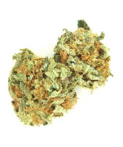 100% money back guarantee or reship, 24/7 AK-47 Delivery, AK 47 Weed, AK-47 for sale in Canada without Script, AK-47 for sale in USA, AK-47 for sale without Script, AK-47 Mail order, AK-47 Marijuana home delivery, AK-47 Marijuana wholesale, AK-47 overnight Shipping, Ak-47 Strain for sale online Canada, Ak-47 Strain for sale online UK, Ak-47 Strain for sale online USA, AK-47 Worldwide Delivery, Ak-47Strain for sale near me, Ak-47Strain for sale online near me, Best Online Dispensary, buy AK 47 weed, Buy AK 47 Weed Australia, Buy AK 47 Weed In America, Buy AK 47 Weed In Austria, Buy AK 47 Weed In France, Buy AK 47 Weed In Germany, Buy AK 47 Weed In Hungary, Buy AK 47 Weed India, Buy AK 47 Weed Online, Buy AK 47 Weed Online Europe, Buy AK 47 Weed Online India, Buy AK 47 Weed Online UK, Buy AK 47 Weed Online USA, Buy AK 47 Weed UK, Buy AK 47 Weed USA, Buy AK-47 in USA, Buy AK-47 Marijuana Onlin, Buy AK-47 Marijuana Online, Buy AK-47 Marijuana Online Australia, Buy AK-47 Marijuana Online USA, Buy AK-47 online, Buy AK-47 Weed Online Australia, Buy AK-47 Weed Online Canada, Buy AK-47 Weed Online New Zealand, buy ak47 marijuana, buy ak47 strain, buy ak47 weed, Buy Cheap AK-47, buy marijuana online, Can I buy Ak-47 strain online, Legit AK-47 Online, Order AK-47, Order AK-47 Marijuana, Order AK-47 Marijuana online, Purchase AK-47 Marijuana Legally, Where to Buy AK-47 Kush Online UK, Where to buy Ak-47 strain online Australia, Where to Buy AK-47 Strain online Canada, Where to buy Ak-47 strain online USA