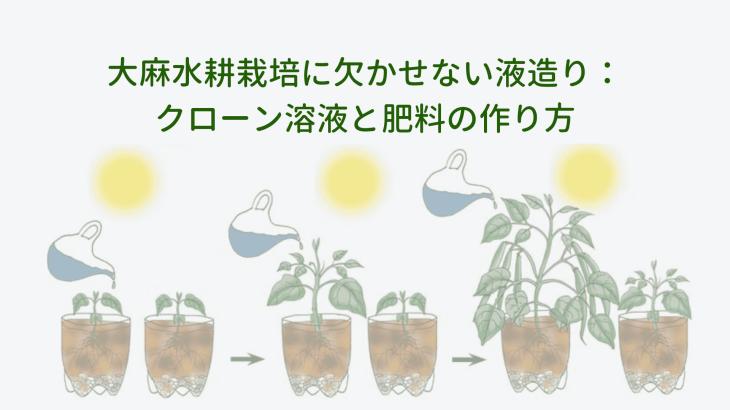 大麻水耕栽培に欠かせない液造り:クローン溶液と肥料の作り方