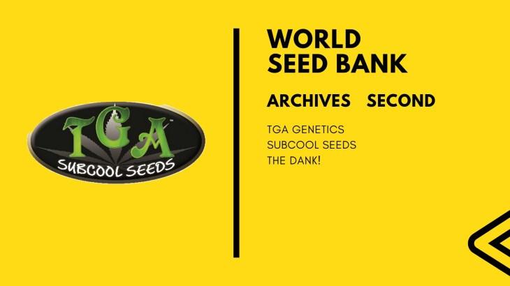 シードバンクアーカイブス 第二回 「TGA Subcool Seeds」