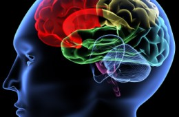 Psychologische triggers helpen overtuigende teksten