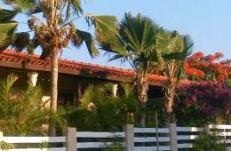 bed and breakfast Bonaire te koop