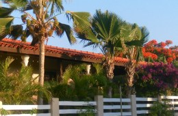 bed and breakfast Bonaire te koop