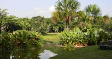 Parque del Este, avenida Francisco de Miranda, Caracas/@ParqueGFM