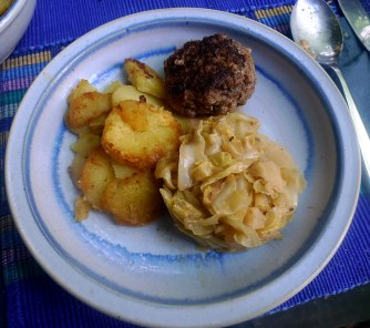 22.6.16 - Spitzkohl,Frikadellen,Bratkartoffeln (15)