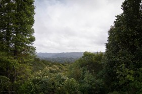 mountains in northland new zealand, sv cavalo