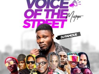 DJ Famous - Voice of the street