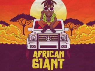 African Giant Mixtape Hosted By Dj Spence Artwork