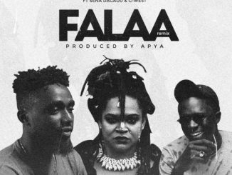 Music: Lino Beezy ft Sena Dagadu & G-West - FALAA Remix