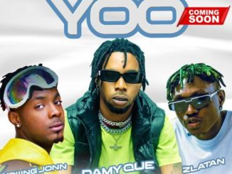 Music: DamyQue Ft. Zlatan, Young John – Yoo