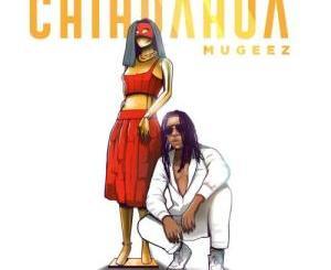 Mugeez – Chihuahua
