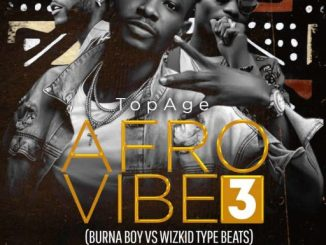 FreeBeat: Afro Vibe 3 (Burna Boy Vs Wizkid Type Beats) Prod By TopAge