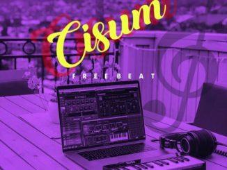 FREEBEAT: Cisum - (Prod. By DJ SmithBeatz & Blake)