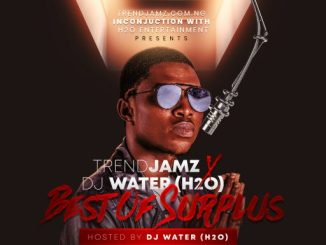 DJ MIX: TrendJamz & Dj Water (H2O) - Best Of Surplus Mixtape