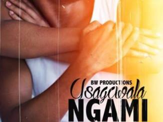 BW Productions ft T-Man – Usagcwala Ngam