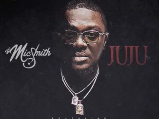 DJ Mic Smith ft. Ckay, Blaqbonez, Pappy Kojo, & more – Juju