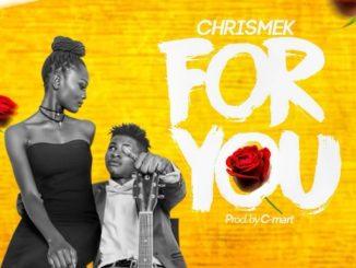 Music: Chrismek - For You