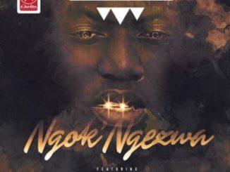 Zete D'roba ft Foreg Zampul – Ngok'Ngezwa