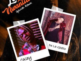 CKay ft. De La Ghetto – Love Nwantiti (Spanish Remix)