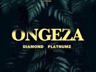 Music: Diamond Platnumz – Ongeza