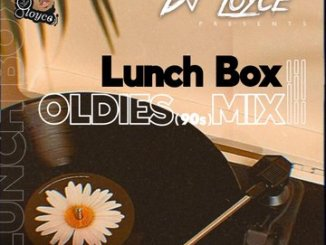 https://anonfiles.com/Z555C6iepc/DJ_Loyce_-_Lunch_Box_Oldies_90s_Mix_mp3