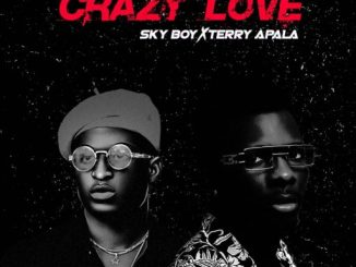 Skyboy Ft. Terry Apala - Crazy Love Artwork