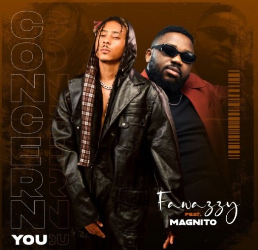 Fawazzy Ft Magnito - Concern You