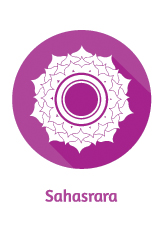 crown chakra, chakra guide, understanding the chakras, vedic, yogi, orgone, sri yantra,
