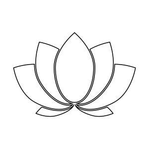 lotus flower, crown chakra, orgone, third eye, vedic, yogi, chakras