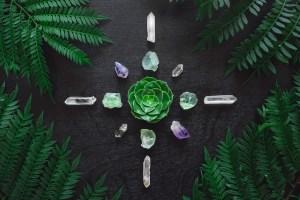 Aeonium and Crystal Grid