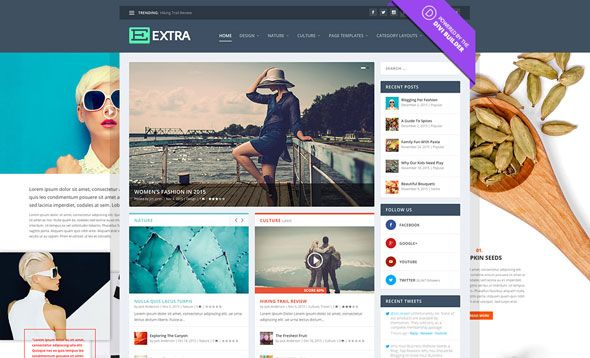 Extra v2.0.101 - Elegantthemes Premium WordPress Theme