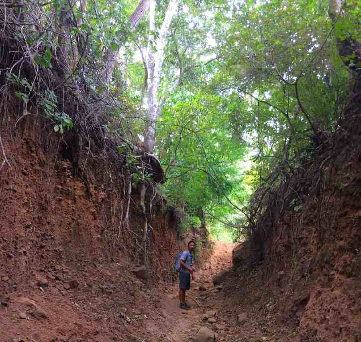 the path to Telica Volcan