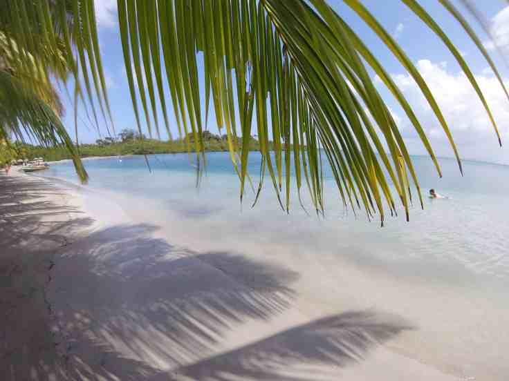 Playa Estrella in Bocas Del Toro Panama