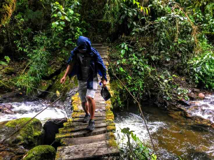 bridge on the trail through Cocora Valley in beautiful Colombia