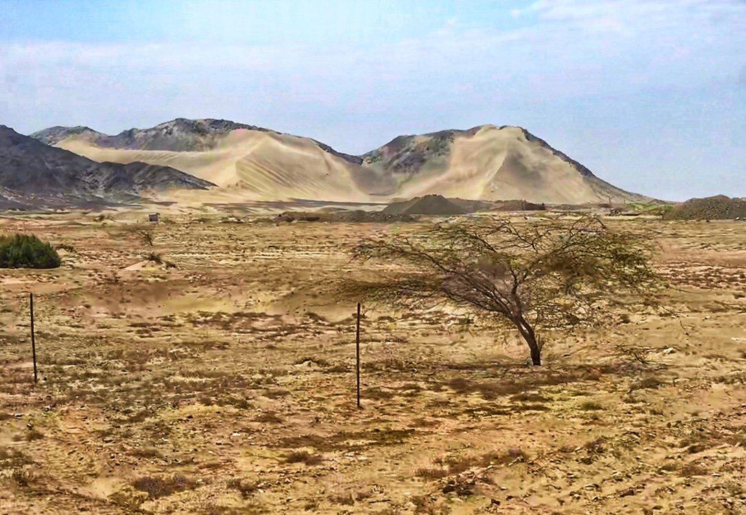 The desert in northern Peru