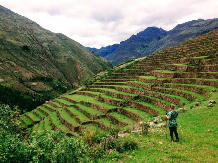 Inca ruins in Pisac looking over the terraces