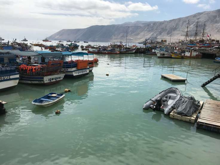 Ocean view from the fish market in Iquique, Chile, examples of resilience
