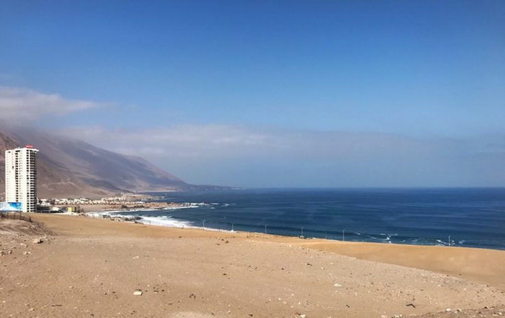 The Camanchaca fog hovering over Iquique, examples of resilience
